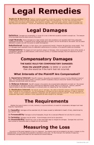 Legal Remedies page 1